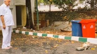 Feed the stray animals and birds says Karnataka CM B.S.Yediyurappa