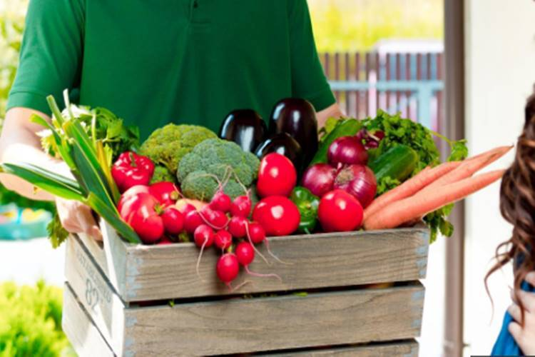 Chennai residents can now order vegetables, fruits on Swiggy, zomato cmda