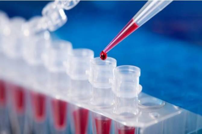corona test samples lab technicians madras high court