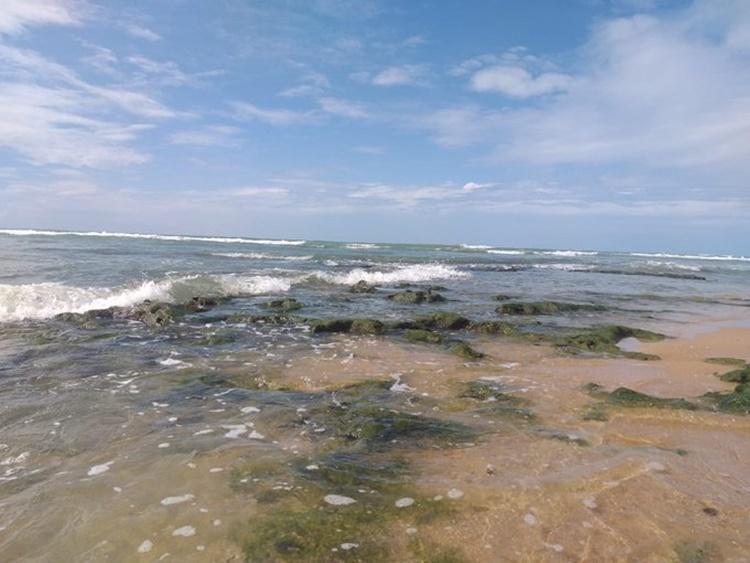 Rip current occured at Thiruchendur beach after Amphan cyclone landfall