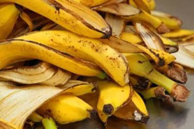 banana peels, what are the benefits of banana peels, can banana peels be eaten? banana, banana skin, ietamil, lifestyle stories, health tips