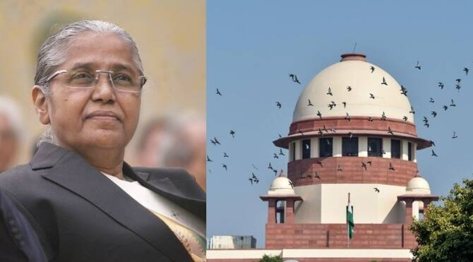 Justice Banumathi says she herself was victim of court delay