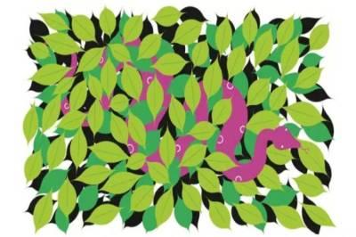 Corona virus, Covid 19, Ayurveda, ayurveda India, ayurveda medicine, ayurveda study, covid fight, ayurveda pandemic, ayurveda coronavirus, ayurveda healthcare, baba ramdev, Express opinion