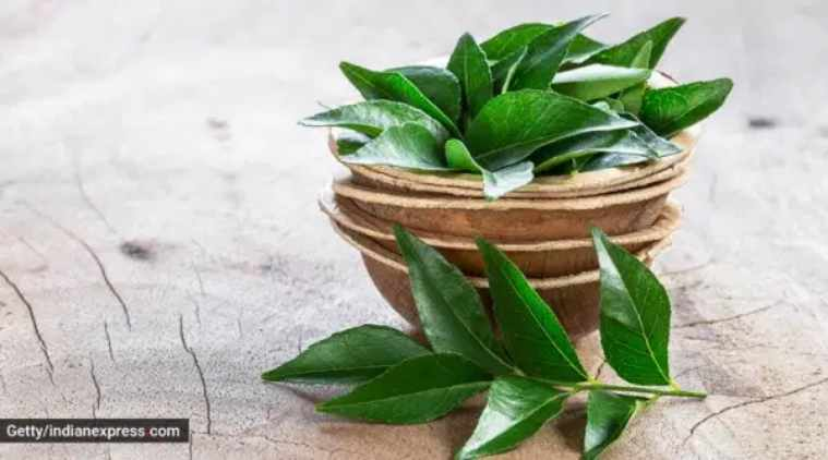 Healthy hair, hair tips, premature greying of hair, hair masks, hair care, curry leaves hair mask, kadi patta for hair care, indian express, indian express news