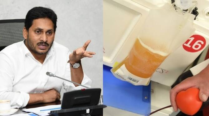 Plasma Donors in Andhra Pradesh to get Rs 5000 as incentive says Jagan Mohan Reddy