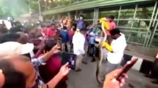 tirpati tirumala, tirpati python, python catchen in tirupati, திருப்பதி, திருமலை, மலைப்பாம்பு, வைரல் வீடியோ, viral video, python catched viral video