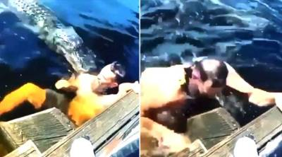 man swims with alligators, alligator suddenly attacked man, viral video, முதலையுடன் குளித்த நபர், வைரல் வீடியோ, முதலை, trending video, man swims with alligators video, tamil viral news,tamil viral video news, trending news