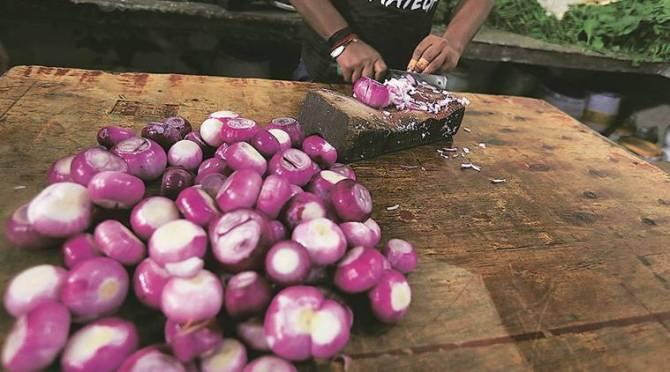 onion tamil onion price onion