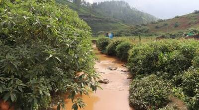 Local residents, environmentalists fear sillahalla hydroelectric project in Nilgiris