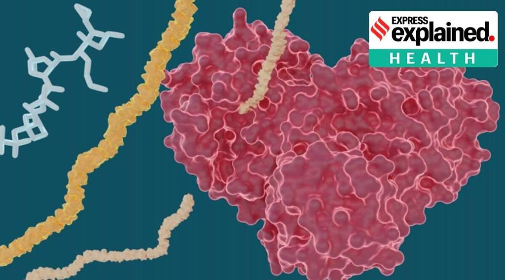 Hepatitis C drugs for covid 19 corona virus tamil news