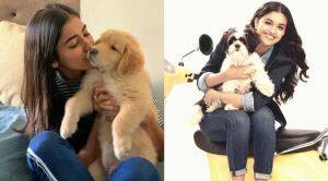 Tamil Celebrities with their pet dogs