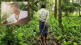 Story of 'Forest man of India' now part of US school curriculum