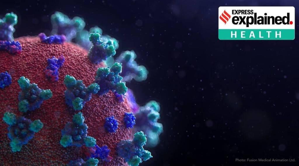 Corona Virus Covid 19 Lung Fibrosis Research Tamil News