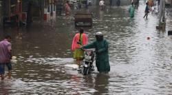 Nivar Cyclone in Tamilnadu Chennai after effects Tamil news