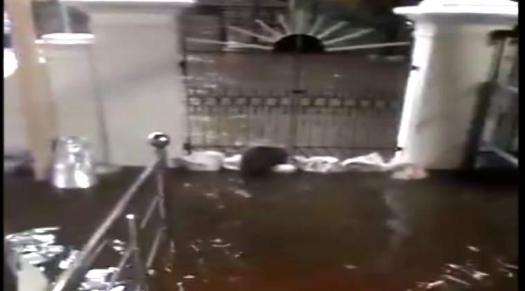 nivar cyclone, karunanidhi house, floods around kanunanidhi house, கருணாநிதி வீட்டை சூழ்ந்தது தண்ணீர், திமுக, கோபாலபுரம், வீடியோ, gopalapuram karunanidhi house in water, chennai, nivar cyclone, rain in chennai, floods in chennai, dmk karunanidhi house video