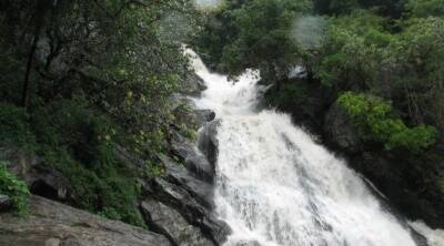 Tamil Nadu Travel and Tourism : Monkey falls opened to visitors after nine months