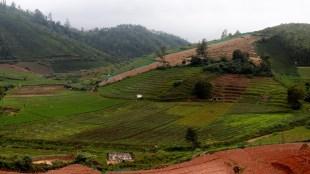 Innocent Divya launched organic Nilgiris mobile application to promote organic farming in Nilgiris