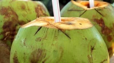 Tender Coconut water health benefits immunity skincare tips Tamil News