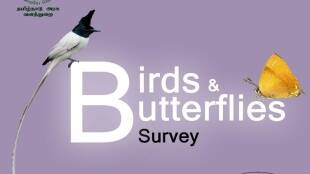 Coimbatore forest division Birds and butterflies survey starts from dec 12