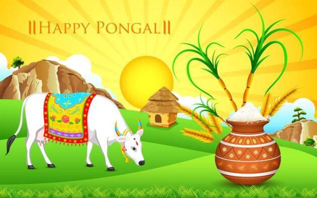 Happy Maattu Pongal Greetings