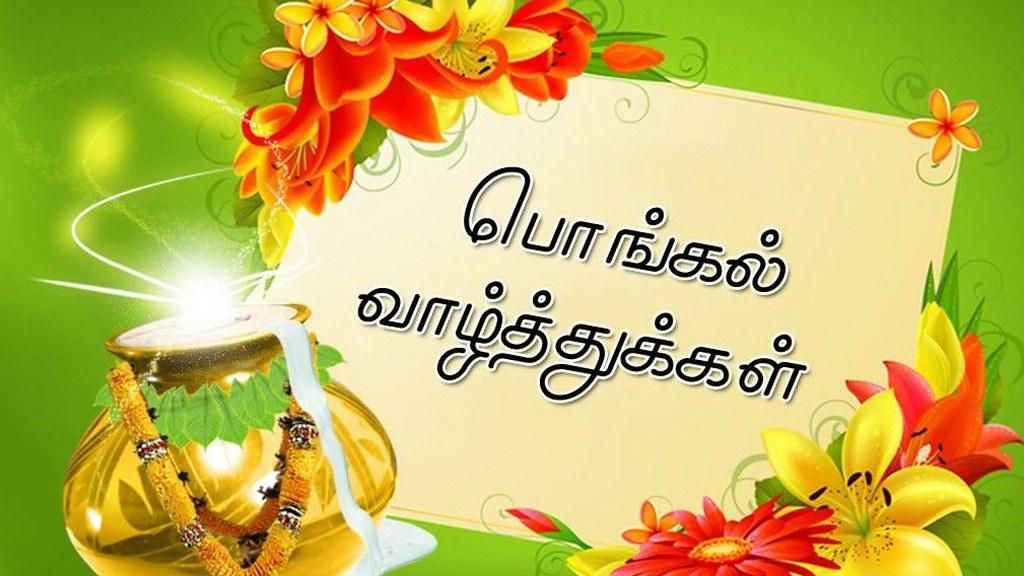 happy pongal 2021 happy thai pongal wishes