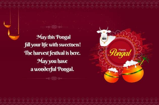 Pongal for Farmers Wishes