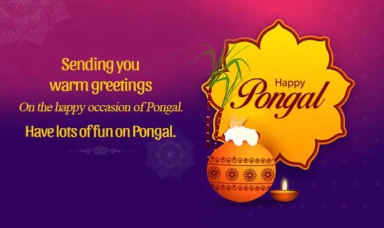 Pongal Wishes Cards
