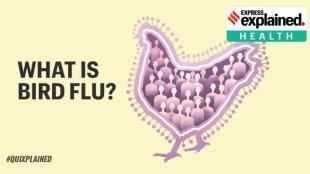 Kerala Himachal Pradesh Madhya Pradesh Rajasthan states latest birds flu updates Tamil News