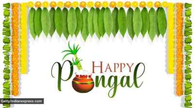 happy pongal, happy pongal 2021, pongal, pongal 2021, happy pongal images, happy pongal images 2021, happy pongal 2021 status, happy pongal wishes images, pongal images, pongal wishes images, pongal quotes, பொங்கல் வாழ்த்து, பொங்கல் 2021, தை திருநாள், மாட்டு பொங்கல், தமிழர் திருநாள், காணும் பொங்கல், happy pongal quotes, happy pongal wishes quotes, happy pongal wallpaper, happy pongal video, happy pongal pics, happy pongal photos, happy pongal messages, happy pongal sms, பொங்கல் வாழ்த்து புகைப்படங்கள், ஹாப்பி பொங்கல், happy pongal wishes sms, happy pongal wishes messages, happy pongal status video, happy pongal wishes status, pongal wishes