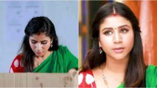 விஜய் டிவி, ராஜா ராணி, raja rani, vijay tv
