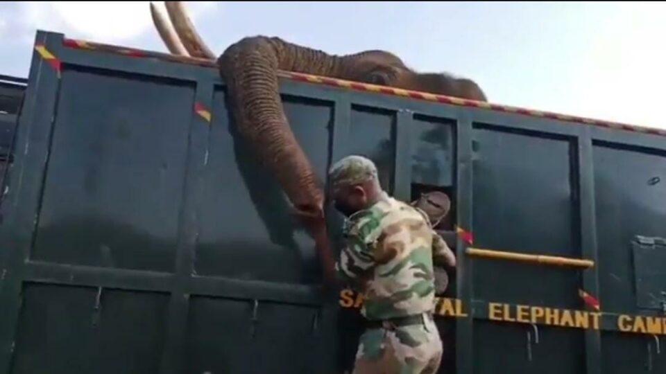 tamil viral video today viral viral video