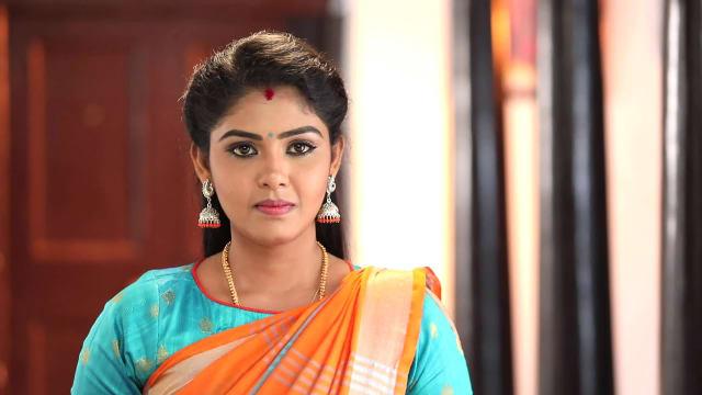 pandianstores meena vijay tv serial