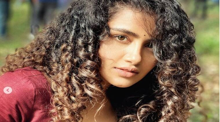 Anupama Paramehwaran Beauty Secrets latest instagram photo viral Tamil News