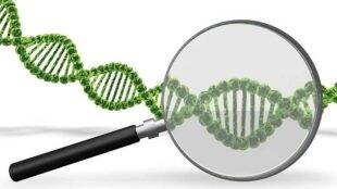 DNA bill, DNA bill india, DNA bill parliament committee, DNA regulation bill, indian express news