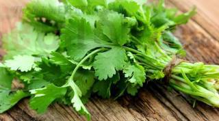 beauty tips tamil news  beauty benefits of coriander