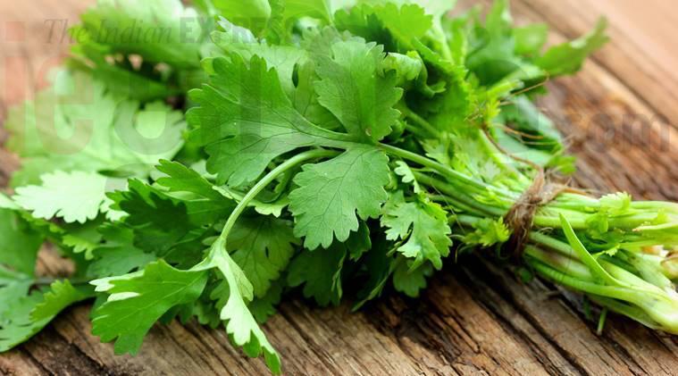 beauty tips tamil news beauty benefits of coriander