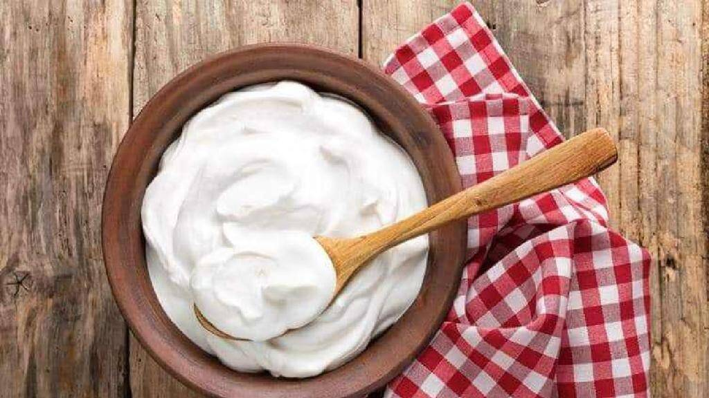 Healthy food Tamil News: how to make curd at home without jaman or starter