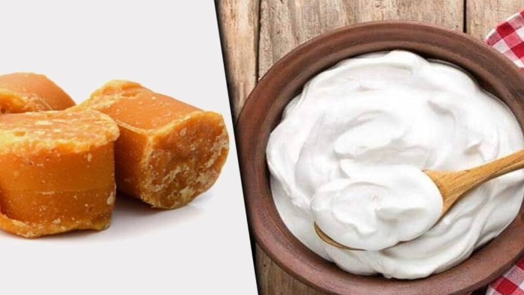 Healthy food Tamil News: Benefits Of Curd and Jaggery in tamil