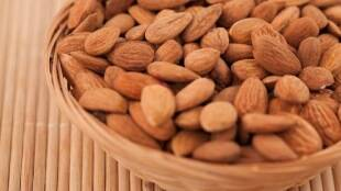 Healthy food Tamil News: How many almonds should you consume daily?