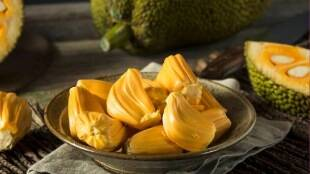 Healthy food Tamil News: health benefits Jackfruit, palapalam benefits in tamil,
