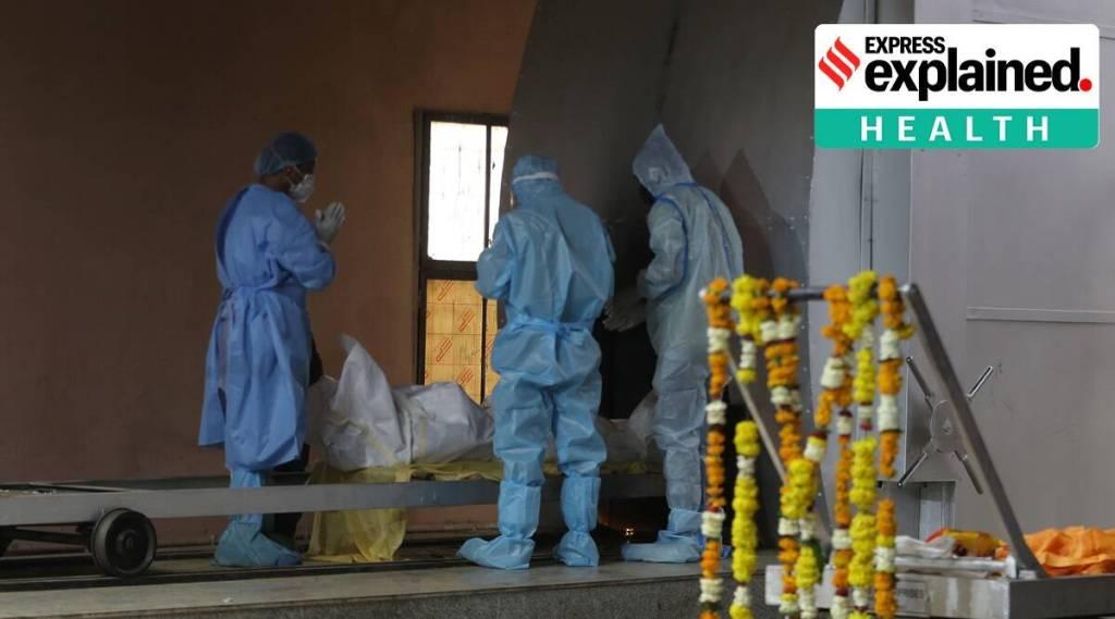 India covid situation coronavirus deaths how far is peak Tamil News