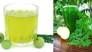 Immunity boosting drinks Tamil News: Build Your Immunity to Fight Covid with Amla and Moringa leaves