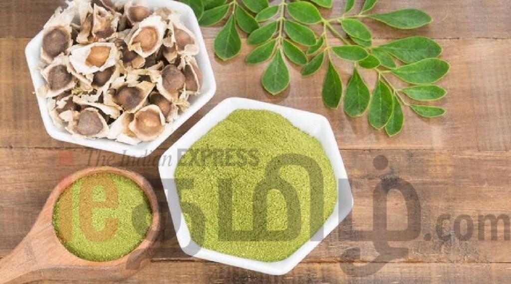 Immune boosting drinks Tamil News: Moringa Drink Benefits Weight Loss