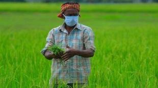 PM Kisan Yojana Tamil News: Rs 36000 in a year under PM Kisan Man Dhan Yojana scheme
