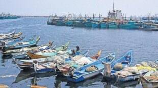 Chennai city news in tamil: Fishing ban ends, only 30% deep-sea vessels likely to go