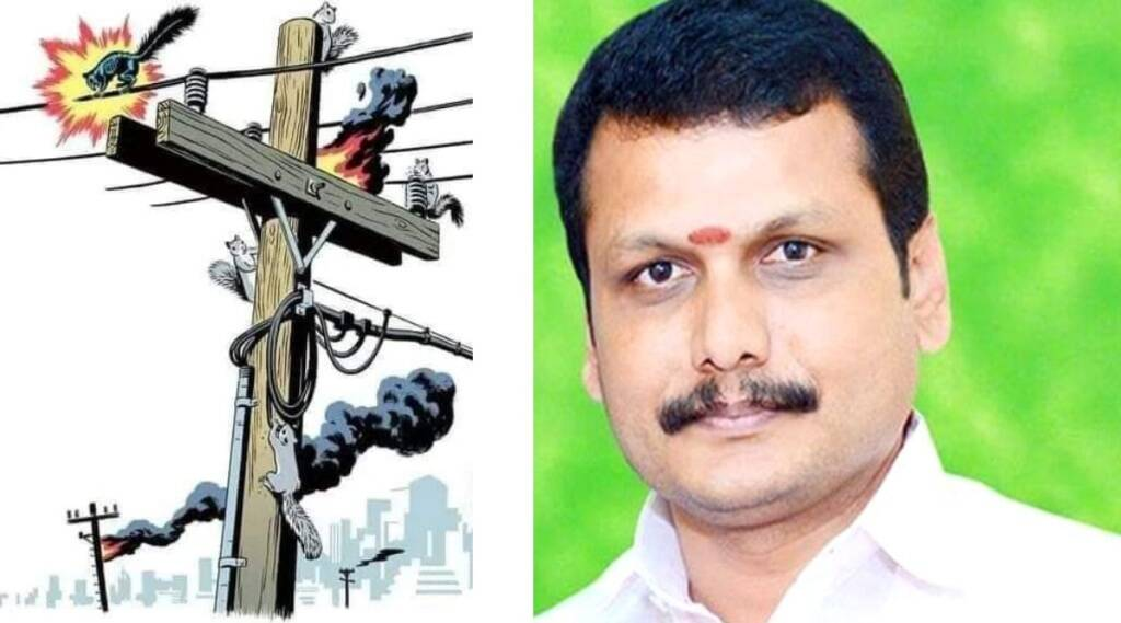 Tamil Nadu news in tamil: Squirrels climbing electric lines through tall trees results in frequent power outage says TN EB Minister Senthil Balaji