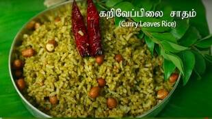 Variety Rice Tamil News: simple steps to make Curry Leaves Rice in Tamil
