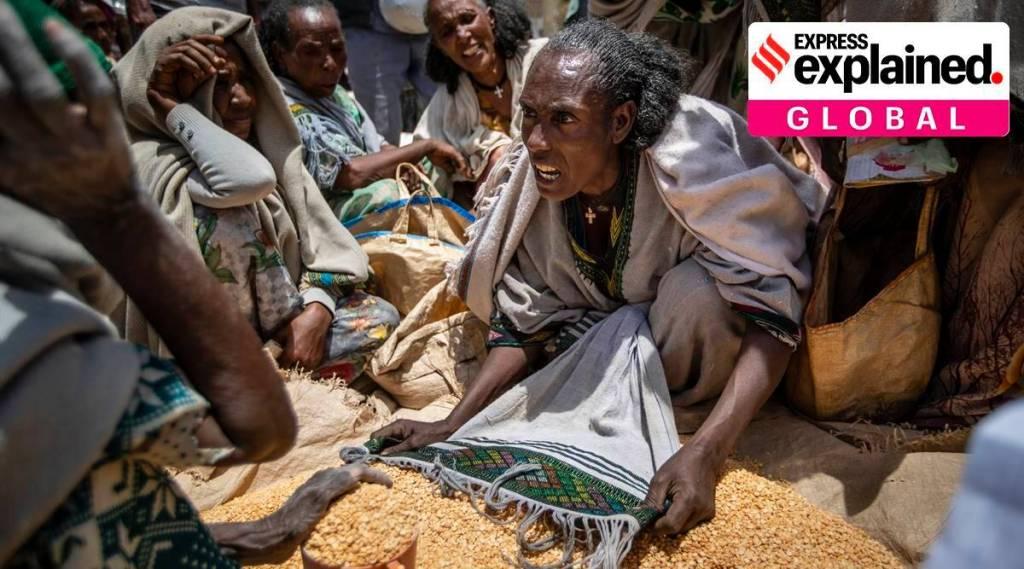 Tigray crisis: A new 'famine' in Ethiopia