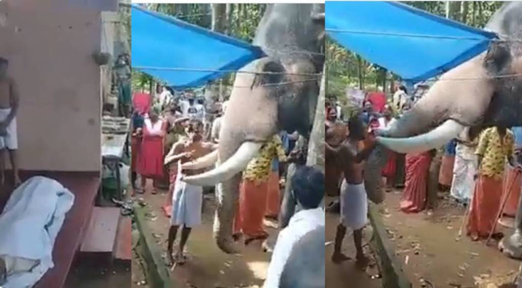 Tamil Viral news Trending video of elephant paying last respect