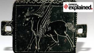 Pegasus, Horse